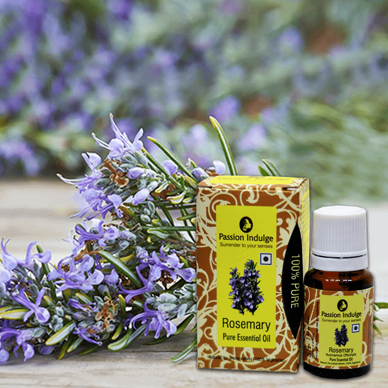 Rosemary Pure Essential Oil For Scalp Disorders - 10 Ml - Passion Indulge